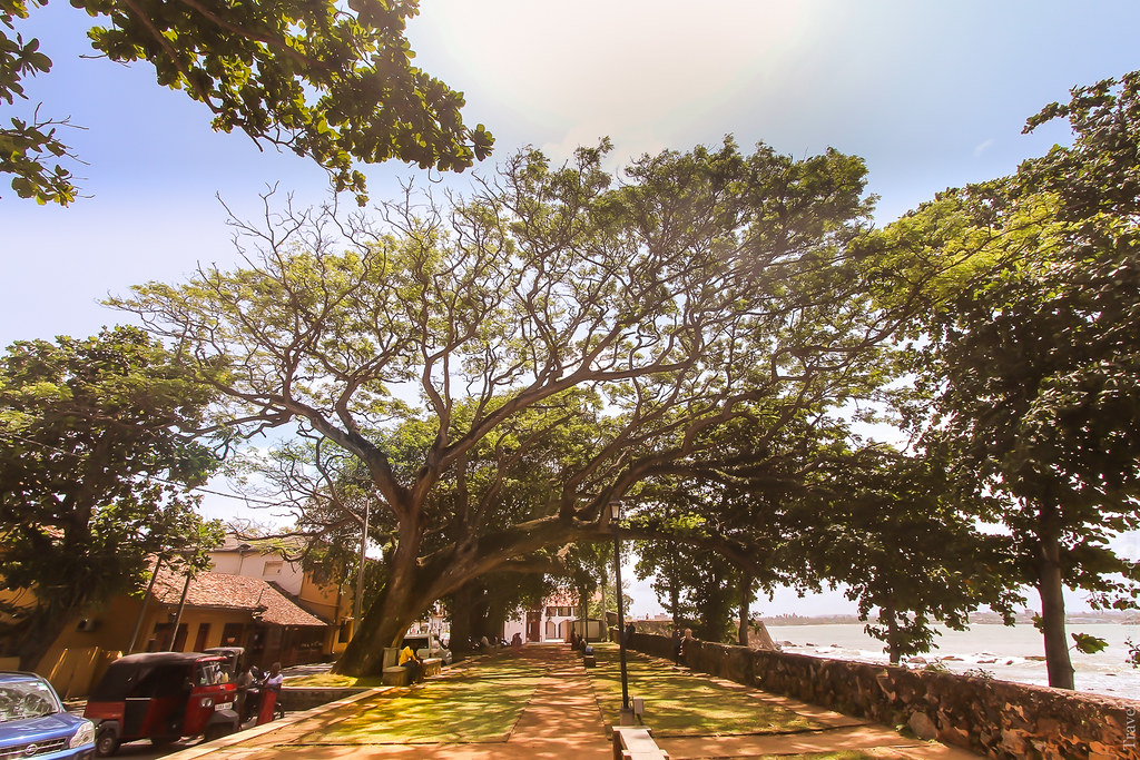 SL-Galle-Fort-canon-1500px-019