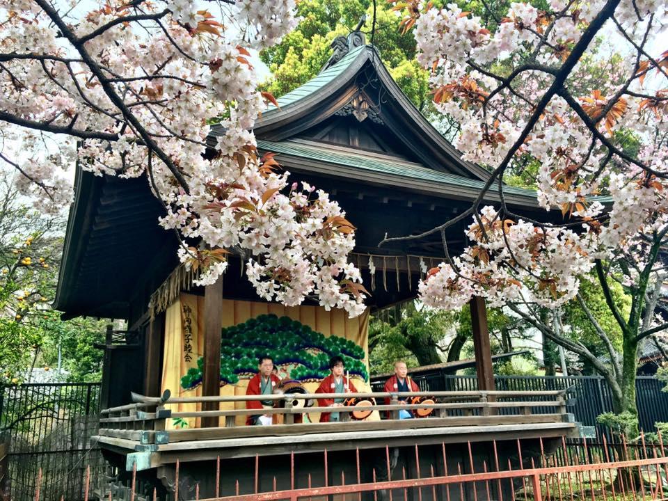 Ueno Park band