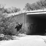 Graffiti tunnel by bartlewife