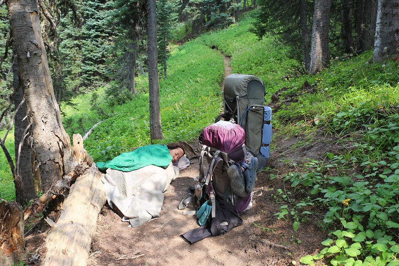 Vicki takes a nap on the Miners Ridge Trail as the switchbacks were very hot and tiring