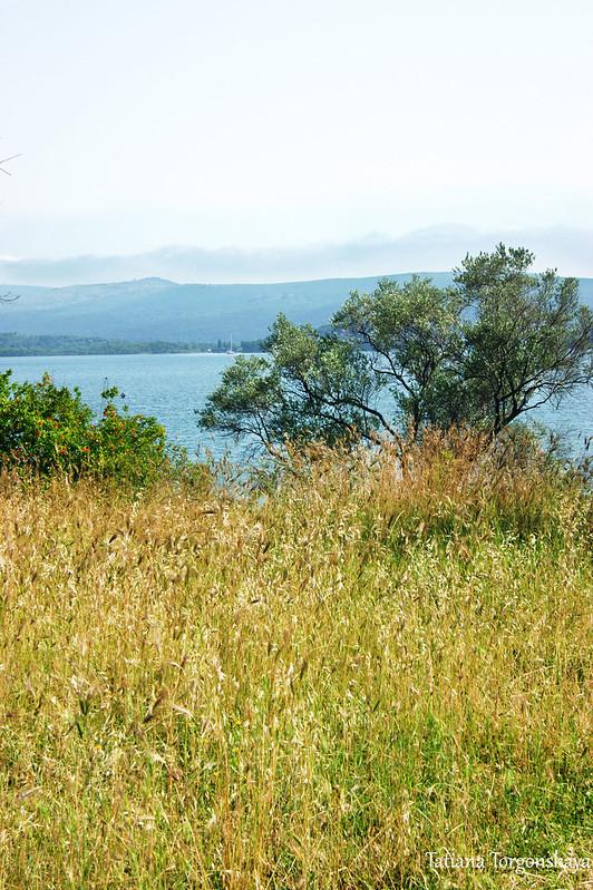 Пейзаж перед резиденцией