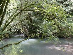 Gorges de la Save - Photo of Saint-Marcet