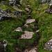 Another Walk Up Skirrid Fawr - Steep, Rocky Path