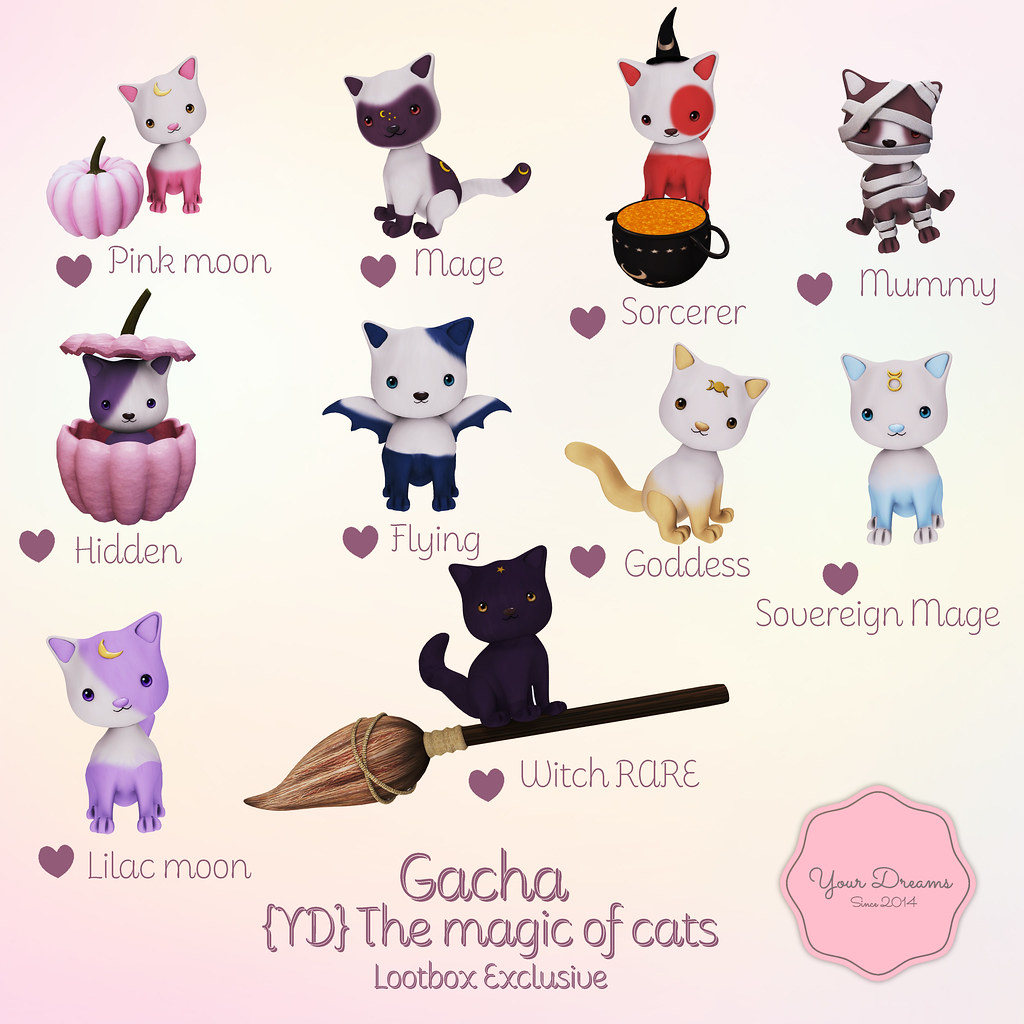 {YD} The magic of cats
