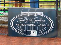 Yankees' Instrux Logo