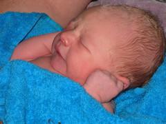 FR10 1227 Sweet Baby James. Montréal, Aude
