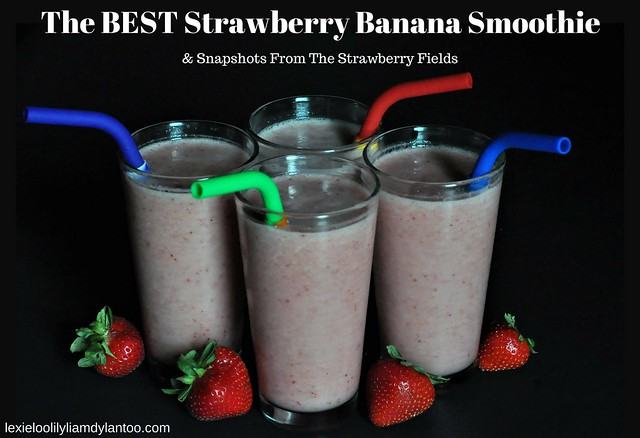 The BEST Strawberry Banana Smoothie & Snapshots From The Strawberry Fields