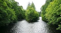 Ness River Island