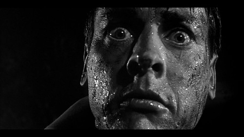 Invasion of the Body Snatchers - 1956 - screenshot 10