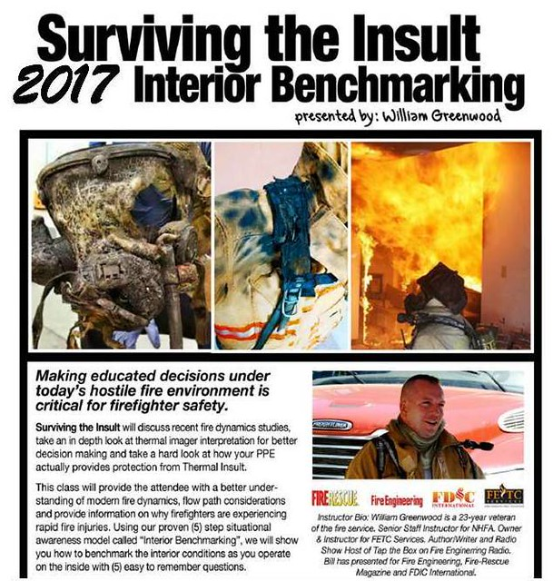 2017 Surviving the Insult