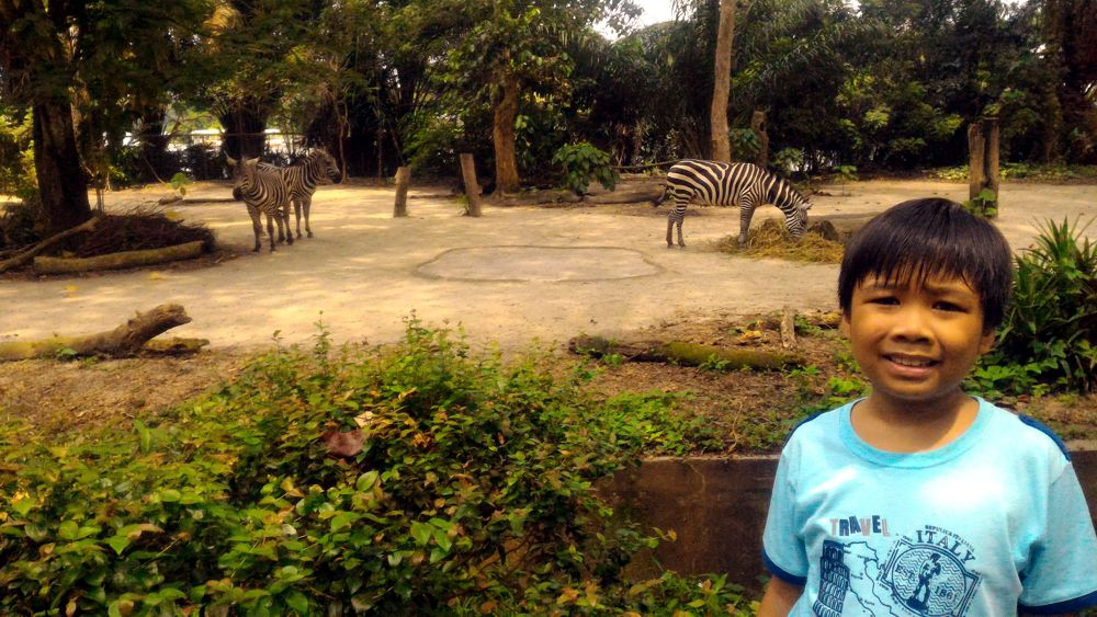 Singapore Zoo 5_zpsnswdagv9