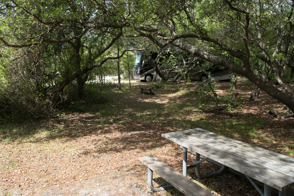 Campsites at First Landing State Park