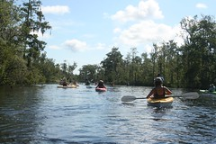 North Florida Land Trust: Breakfast Paddle on the Ortega River