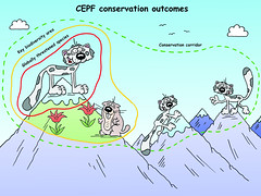 CEPF conservation outcomes