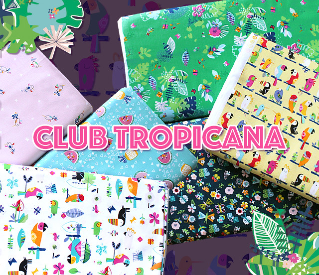 Dashwood Studio Club Tropicana Collection by Stephanie Thannhauser
