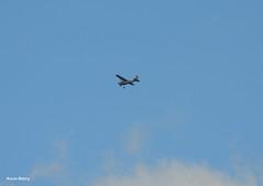 Cessna A185