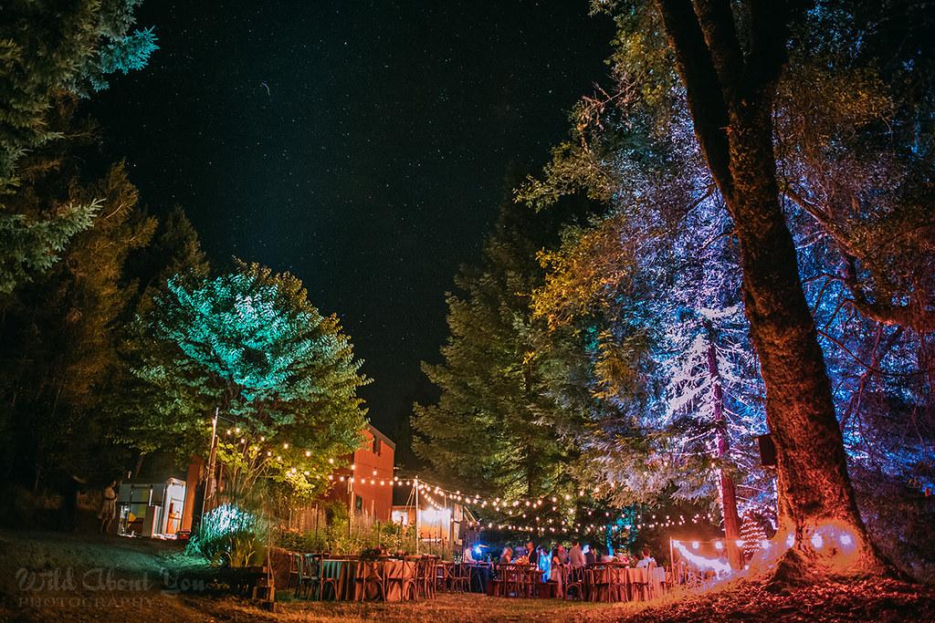 redwoodwedding095