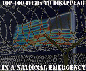 Top 100 Items to Disappear in a National Emergency