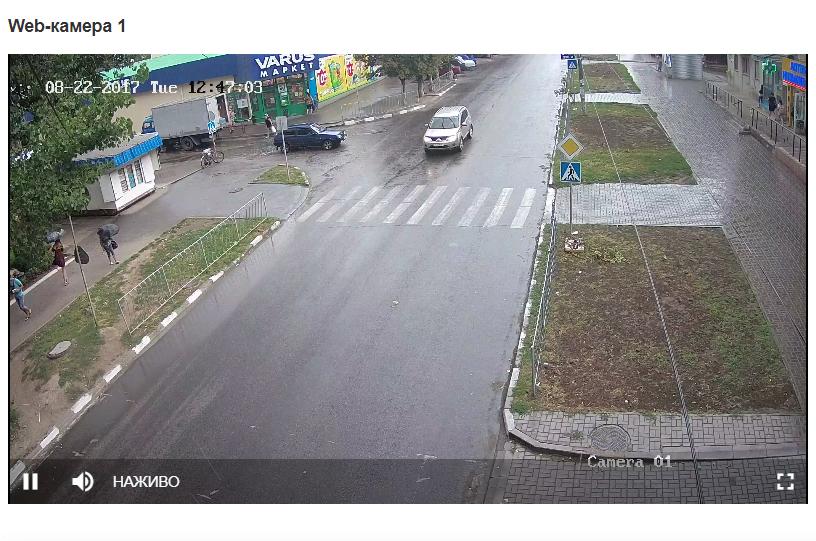 Web-камера 1