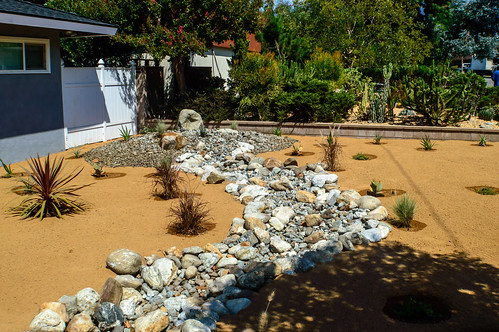 DLS Best Low Water Landscaping Desert Drought Tolerant Resistant Service In Claremont California CA