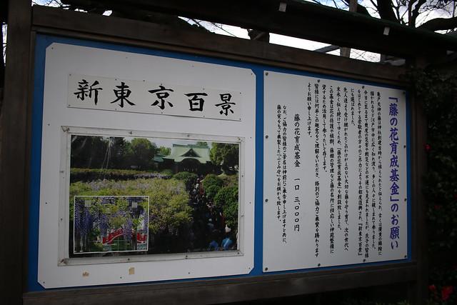 20170114-亀戸天神社_0005.jpg
