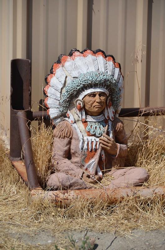 Shoshoni the little indian