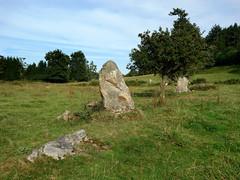 L'alignement de menhirs de la Bouaderie près de Gosné - Ille-et-Vilaine - Septembre 2017 - 06 - Photo of Liffré