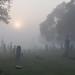 Foggy Morning Cemetery by chuckh6