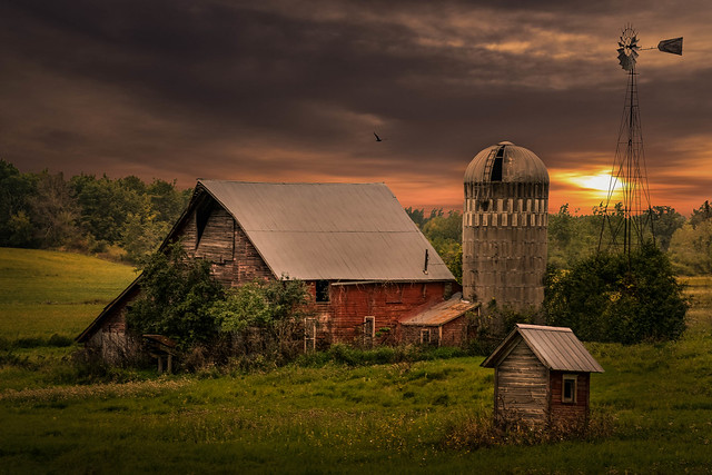 The Dunny Barn