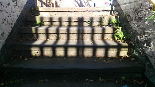 Shadows at Dorking West
