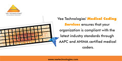 Medical Coding Services - Vee Technologies