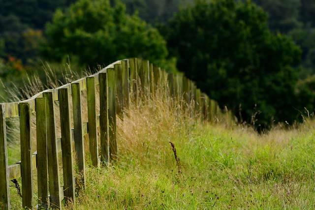 Fence, Nikon D5200, Sigma 70-300mm F4-5.6 APO DG Macro HSM