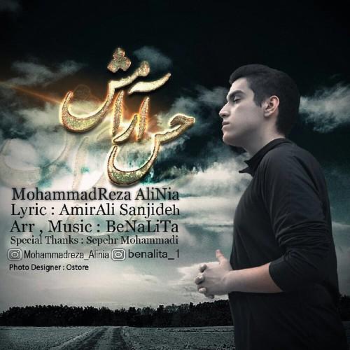 دانلود آهنگ جدید محمدرضا علی نیا بنام حس آرامش