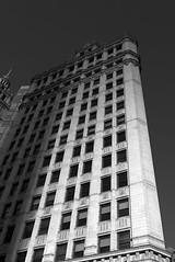Wrigley Building (Chicago 8-16-17  012)