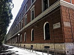 Roma viale Giulio Cesare