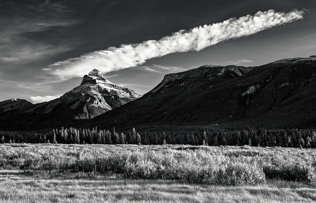 Pilot Mountain, Moose Meadow