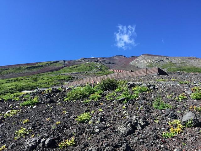 Descente du Mont Fuji