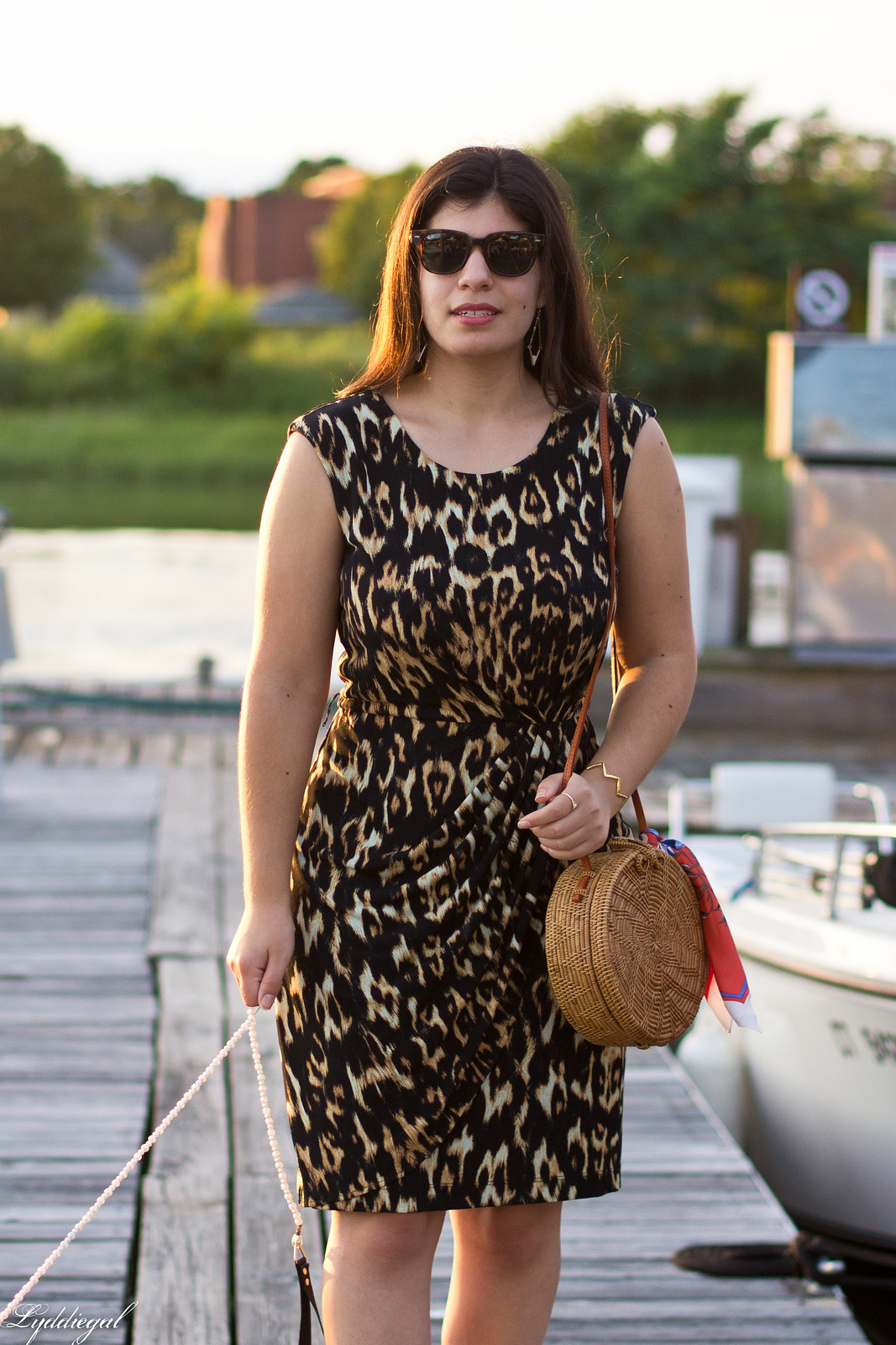 leopard sheath dress, round rattan bag, dog walking-9.jpg
