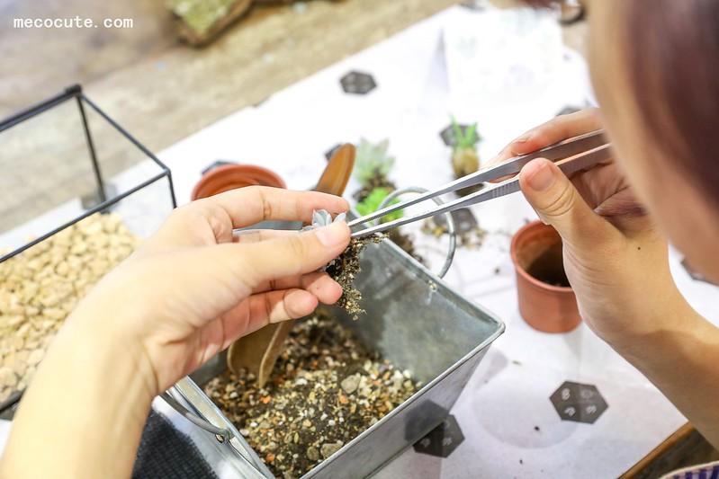 台北多肉教學課程,多肉教學報名,多肉植物手作課程,多肉課程,有肉 Succulent & Gift,森林寶盒 @陳小可的吃喝玩樂