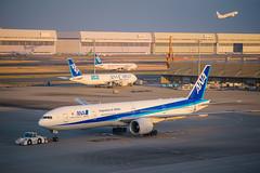 ANA & JAL   Haneda Airport