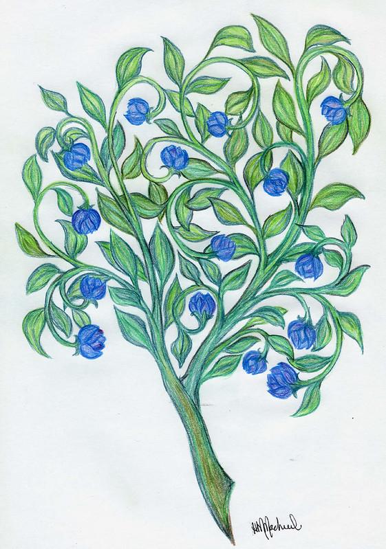 flowering_branch