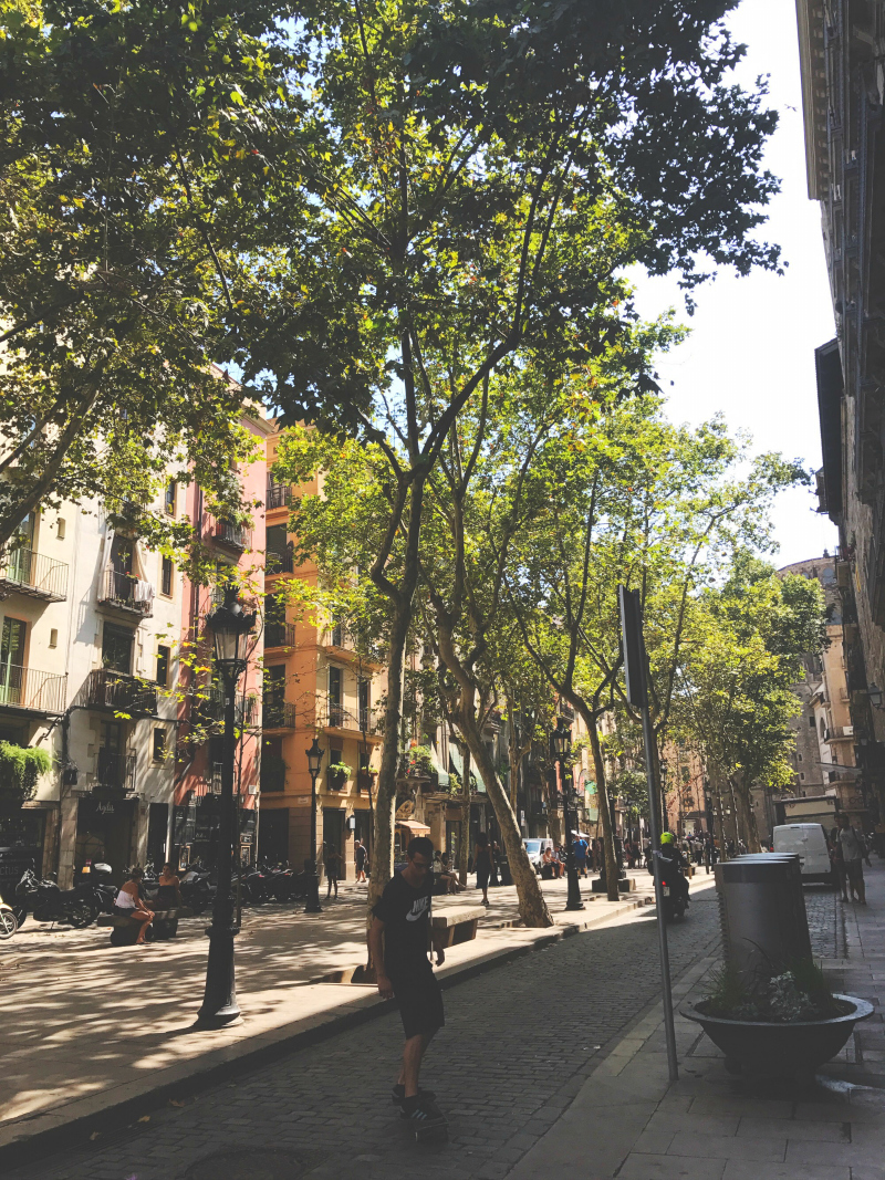 guide to barcelona el born district things to do vivatramp