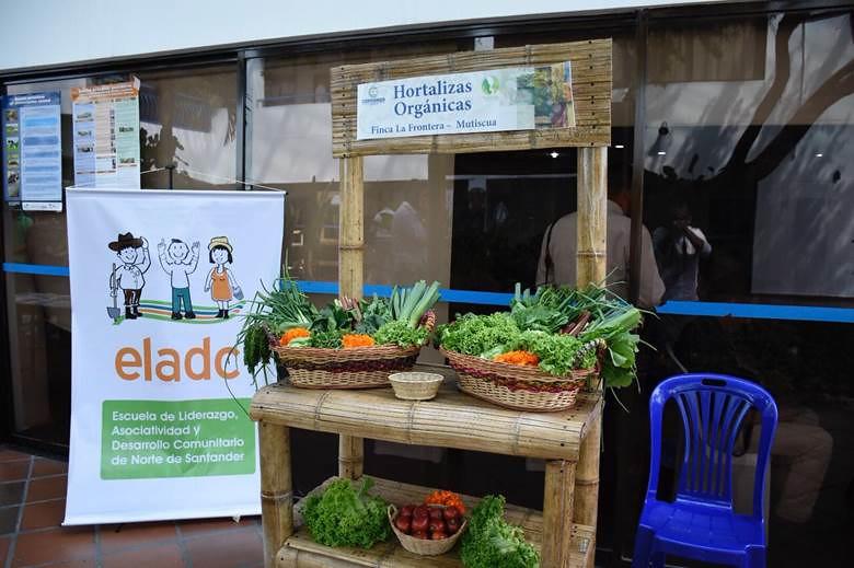 Con Ventanilla de Negocios Verdes, Norte de Santander le apuesta a la sostenibilidad regional