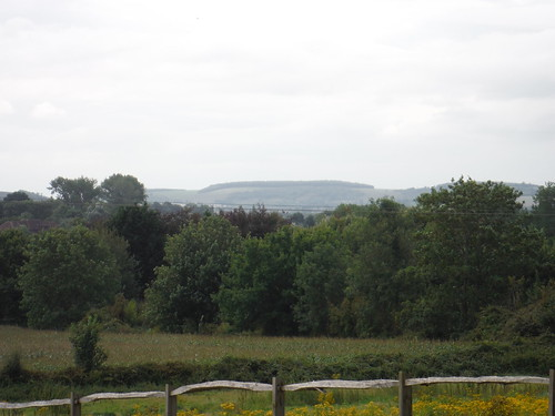 South Downs Views