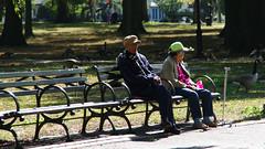 Bowne Park Queens.....HBM
