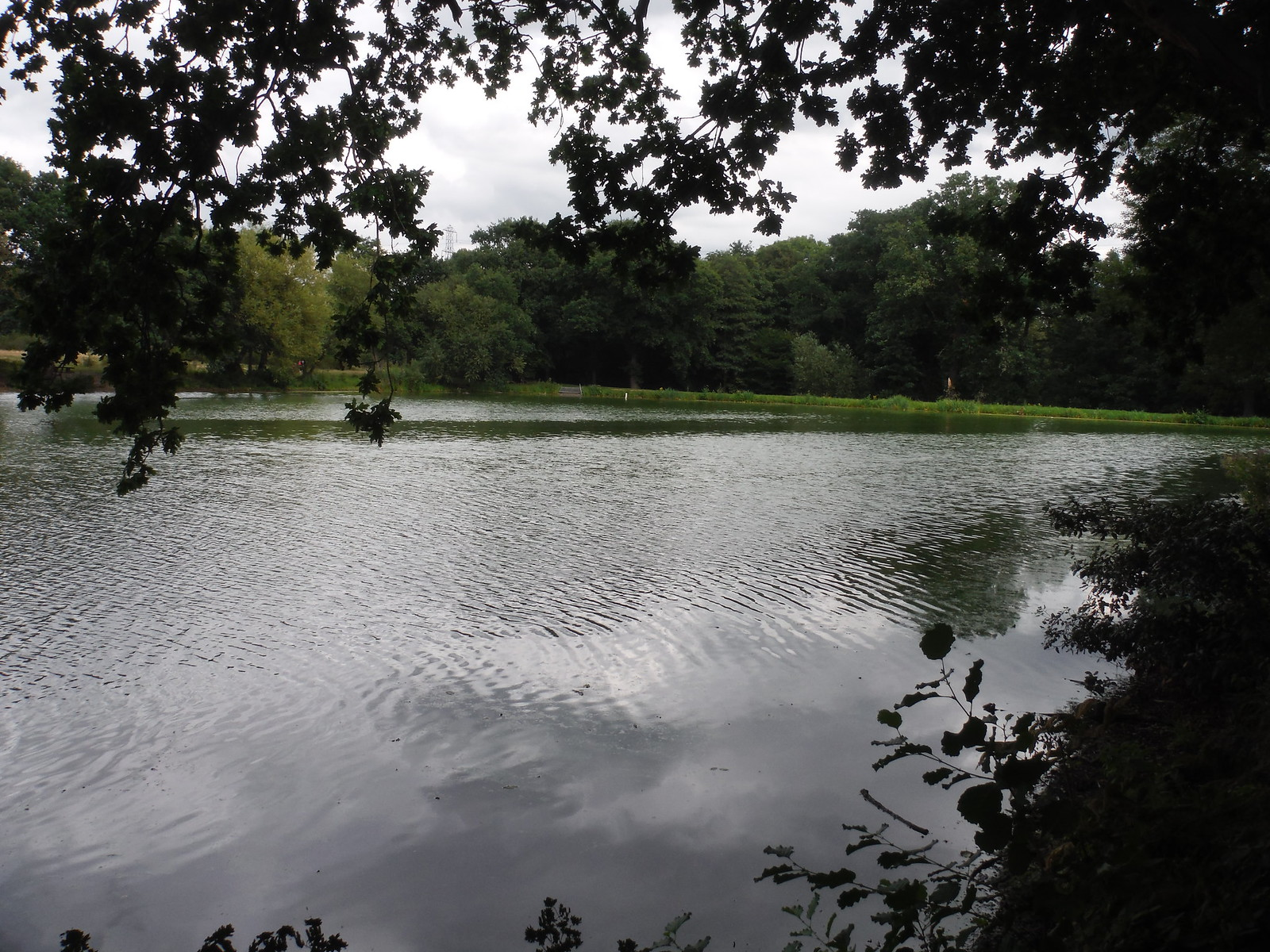 Perch Pond SWC Walk Short 11 - Wanstead Park