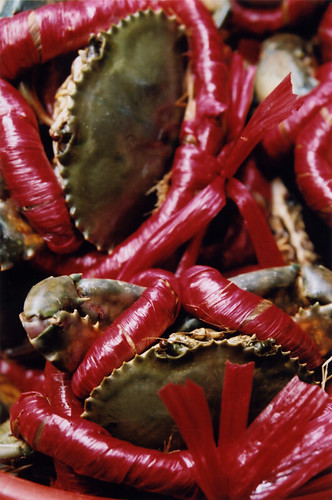 Crab all tied up in red in a market in Vietnam