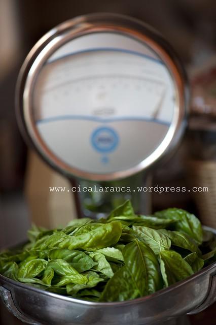 100 grammi di foglie di basilico 100