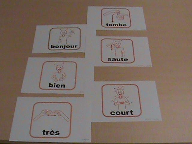 Les gestes en action! : colour small flash cards.