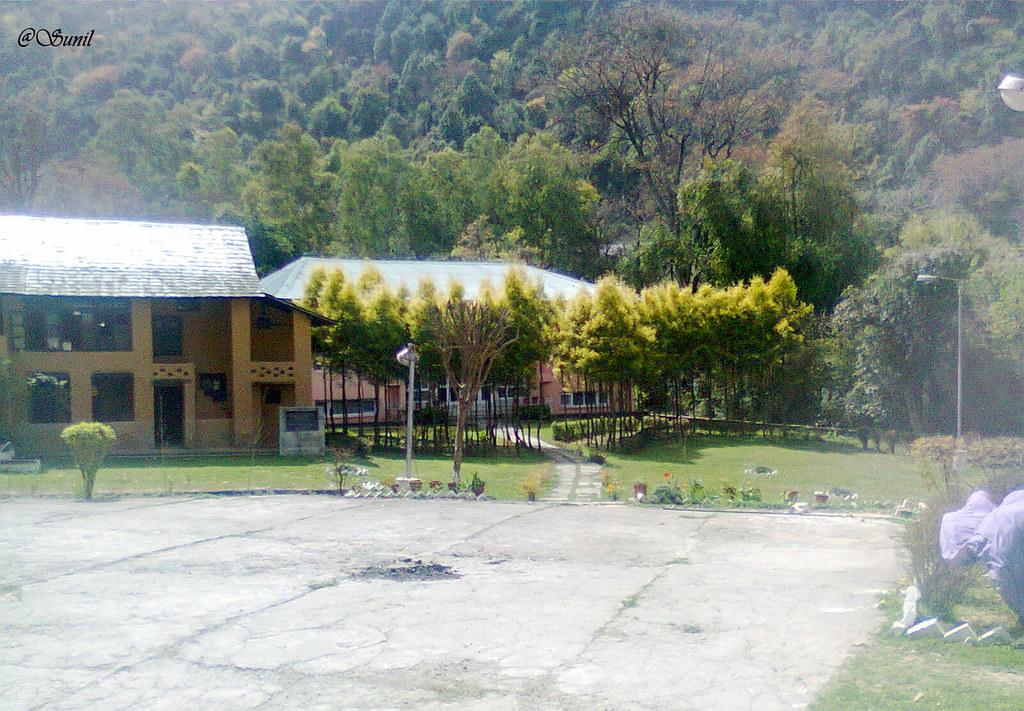 Photo1104 (2)
